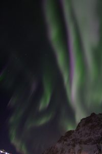 A greyscale picutre of the Northern Lights.